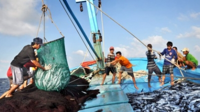 Illegal, unreported and unregulated fishing in crosshairs