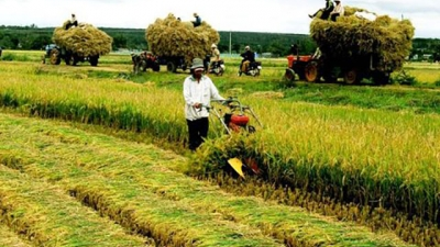Agriculture sector targets $40 billion in export turnover