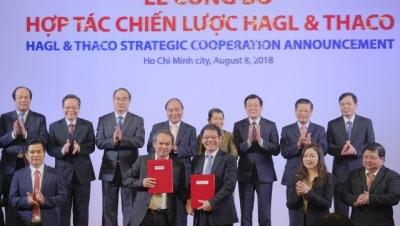 Thaco signs strategic cooperation deal with HAGL