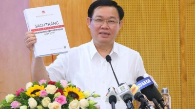 First White Book on Vietnamese businesses set for release