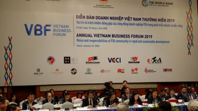 VBF 2019: FDI has role and responsibilities in sustainable development