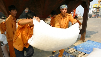 Rice exports exceed 2 million tons